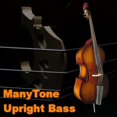 Manytone Upright Bass
